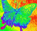 Life with a butterfly Effect