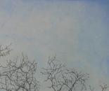 Clouds #3