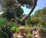 Abbey Garden