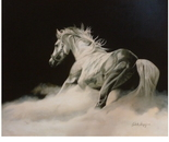 """""""El caballo de la justicia"""""""