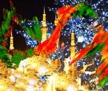 Sapporo Dream Night