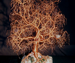 Kristallnacht, Tree of Life, wire tree sculpture