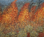Tjanpi Waru (Grass Fire) 4