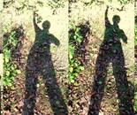 My shadows; at Milton M. Kaufmann Park on November 16, 2015