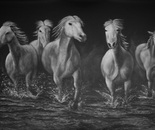 Cinco Caballos