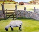 19 Sheep