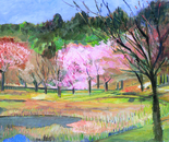 Vestige of the Spring