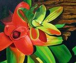 Bromeliad Design
