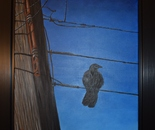 Crow on Wire