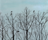 Crows in Trees 1