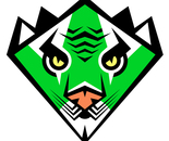 Green Javan Tiger Karate Black Belt Super Hero Badge