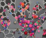 HIV Particles