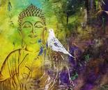 Dove Buddha