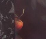 Pommes en Suspens, la Discrète
