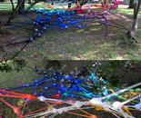 intervention invading network - net no. 44