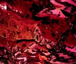 Sapore nel Colore Lat 51.5075