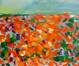 Sommerwiese 155x80