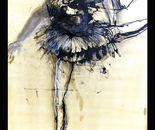 Bird Shadow (Dancers Series)