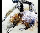 White Albatroz (Dancers Series)