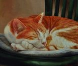 Ginger happiness. 45x60, 2014