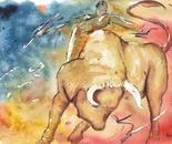 Toreador Bullfight