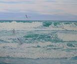 Anaura Bay and Seagulls East Coast NZ