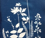 cyanotype meadow