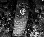 37. The memorial stone with a picture of Marek Steinbaum...