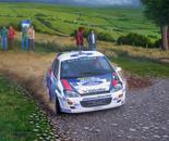 Focus WRC 2000