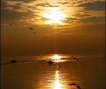 torri tramonto