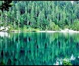 toner lake