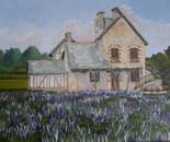 paesaggio francese