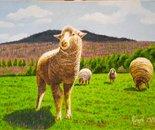 LG 0218 - Le pecorelle - olio su tela - cm. 24x18