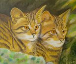 LG 0226 - I gatti - olio su tela - cm. 24x18