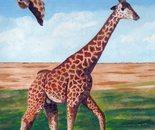 LG 0264 - La giraffa - olio su tela . cm. 19x25