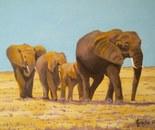 LG 0283 - Elefanti - olio su tela - cm. 25z20
