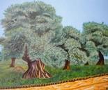 LG 0287 - Ulivi del Salento - olio su tela - cm. 40x30