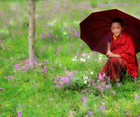 monaco con ombrelo