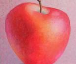 red apple  XI