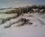 Village in the winter