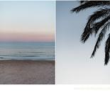 Tarragona, Spain, 2016 - Palmtrees