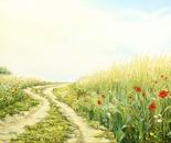 Wiesenwesenweg