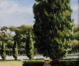 El Arbol: Cypress