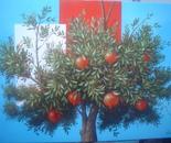 2 pomegranate 120x100m 2.850e