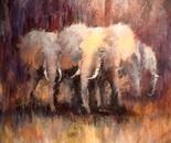 Elephant standoff oil. 40x40