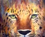 Leopard. Oil. 30x40