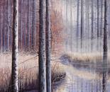 Natura silente cm.60x70