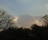 Morning Light 4