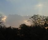 Morning Light 5