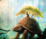 Worldly turtle
